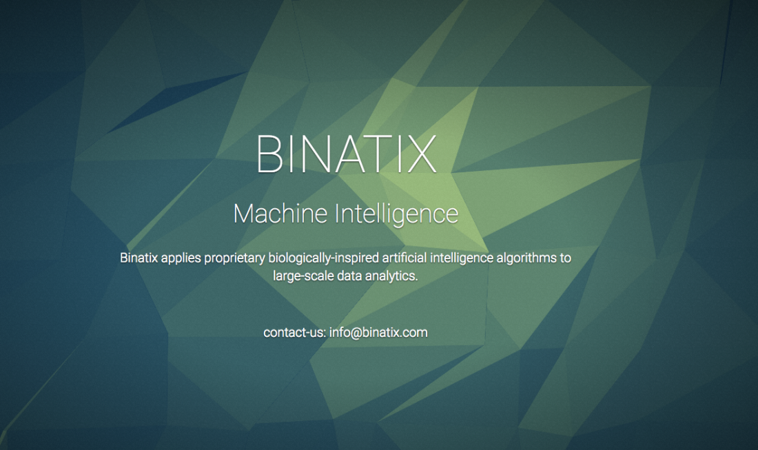 machine learning binatix